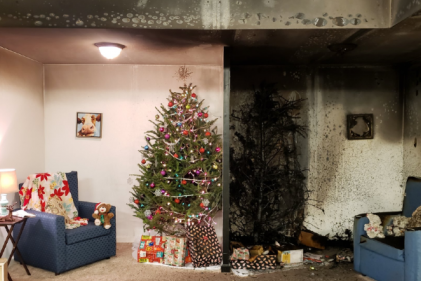 Danger Alert: This video highlights why you need to water your Christmas tree