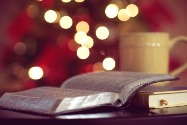 Winter tales: Here are 5 perfect books to read at bedtime this Christmas