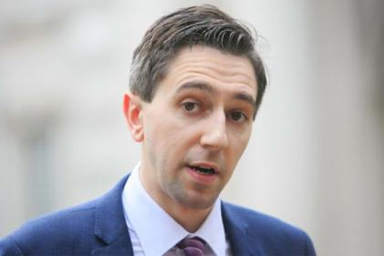Simon Harris says protest outside his house was very frightening