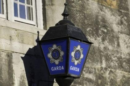 Gardaí are investigating an alleged attempted abduction in Co Meath