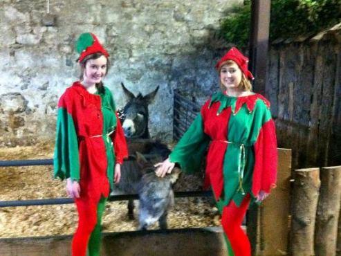 Galway: Turoe Pet Farm Winter Wonderland