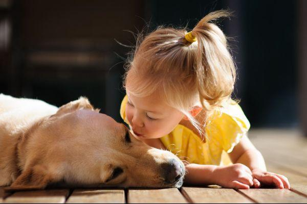 We all prefer our dogs to our brothers and sisters, study finds