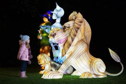 Dublin Zoo shares photos of this years Wild Lights and it looks MAGICAL