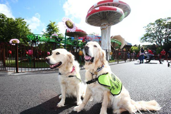 Tayto Park announces a special Autism Awareness Weekend