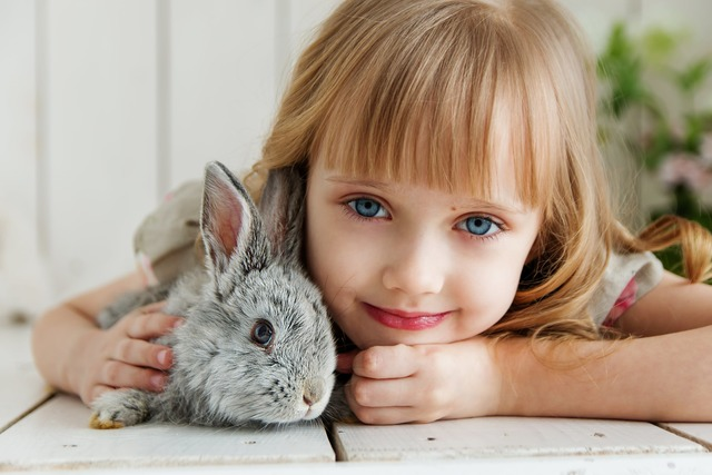 Bunny Corner Event this weekend in Dublin