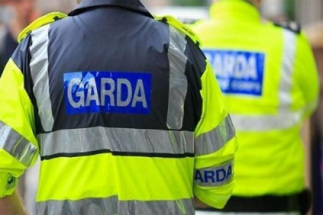Gardaí issue appeal after human remains found in Dublin
