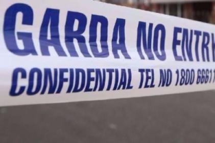 Five-year-old boy dies in tragic farming accident in Roscommon