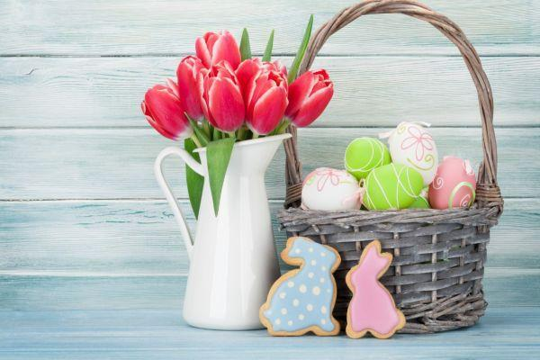 Expert advice: How to take care of beautiful blooms this Easter