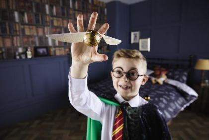 Wands at the ready! Aldi unveils Harry Potter collection