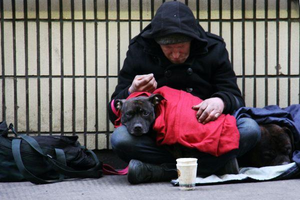 Get involved! Public called to sleep out to 'Shine a Light' on homelessness