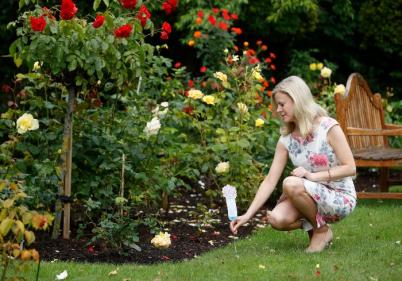 Hospice invites public to sponsor a flower in memory of someone they have lost