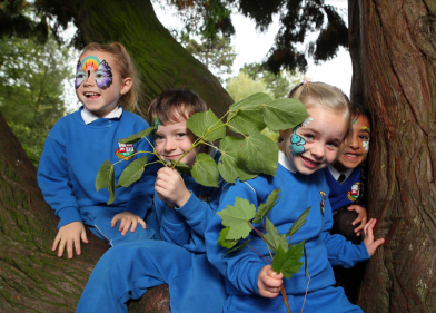 Tree Day: 1500 tree saplings are available for primary schools to plant on school grounds