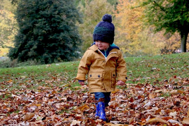Top 5 tips to help support your toddler's immune system this winter