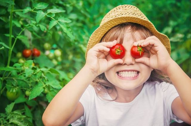 What should my pre-schooler eat in a day?