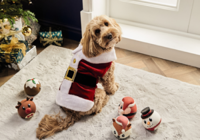 Spoil your pets this Christmas with Aldis mega pet present collection