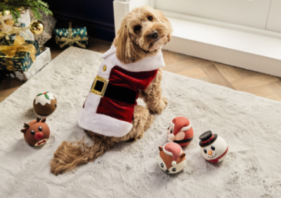 27 of the best Christmas gifts for your pet