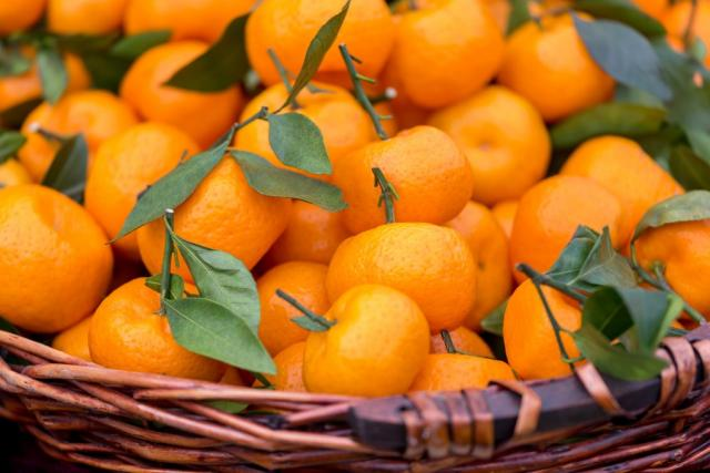 New products harness the power of Vitamin C to support the immune system
