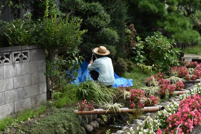 Thinking of starting gardening? Read this first