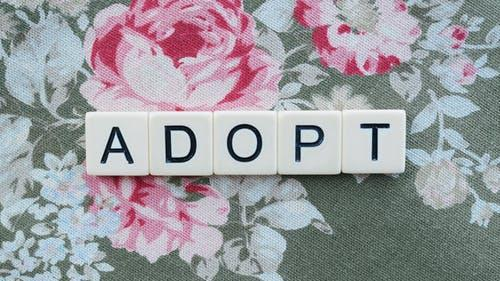 Adopting a child from China; What is involved?