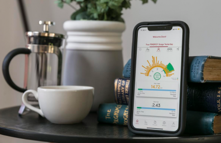 Pinergy Lifestyle designed to help families with new smart meters