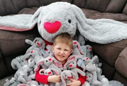 Buy a delightful grey rabbit to raise funds for Ronald McDonald House