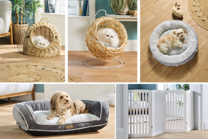 Aldi launch a huge pet accessories range featuring a mini egg chair