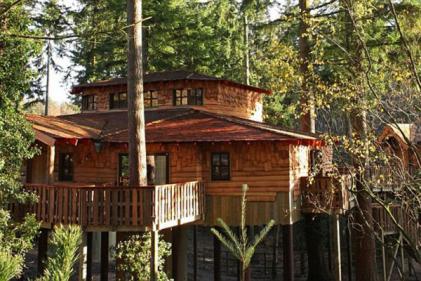Ireland's Center Parcs announce huge expansion plans with treehouse lodges
