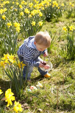 Easter egg trail game