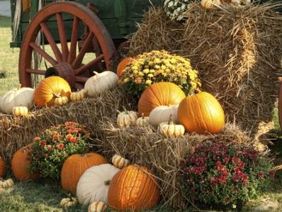 The Virginia Pumpkin Festival