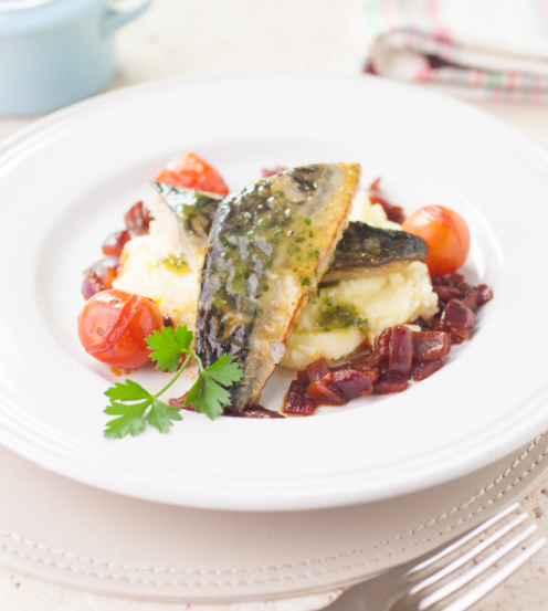 Pan fried mackerel with mash and tomato stew