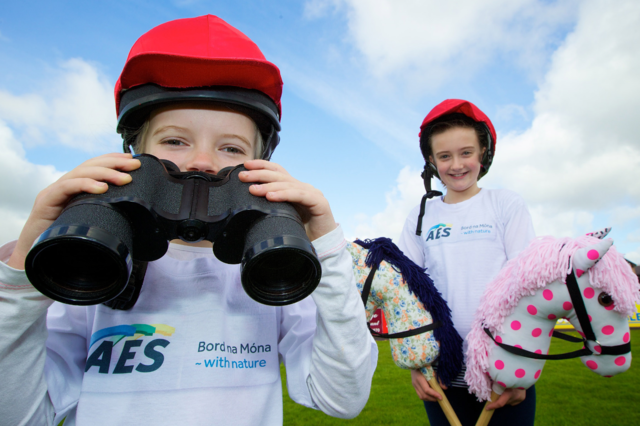 AES Family Day at Punchestown Festival