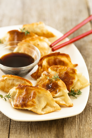 Korean fried dumplings