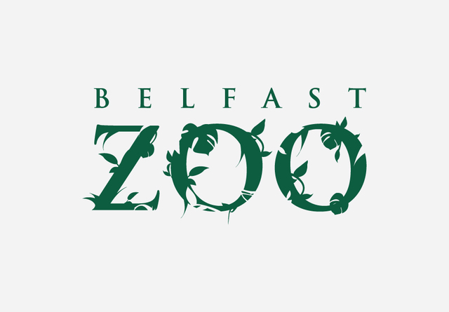 A Magical Christmas at Belfast Zoo
