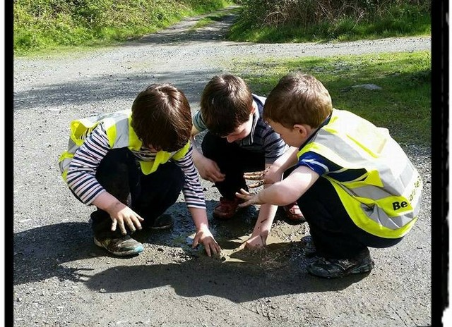 Adventure Kids Wicklow