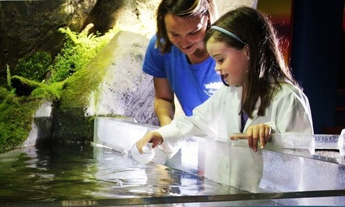 Galway Atlantaquaria Science 4 Summer