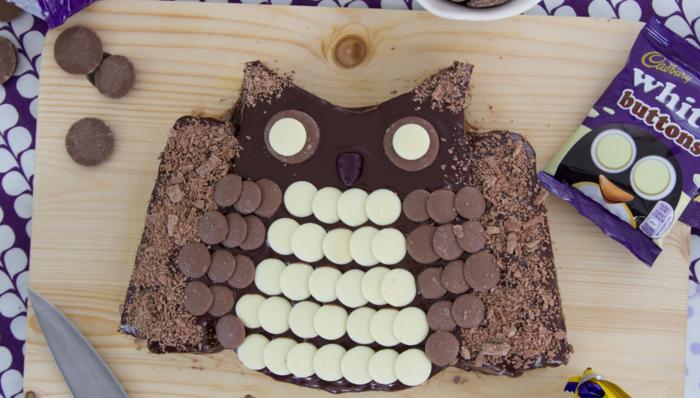 Cadbury Buttons Owl Cake Recipe