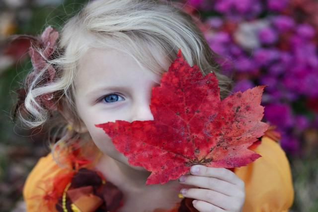 6 fun things to do with kids as Autumn sets in