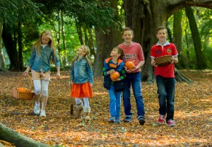 Castlecomer Discovery Park Halloween Events
